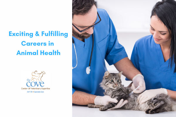 Exciting and Fulfilling Careers in Animal Health